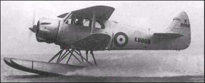 Airspeed Queen Wasp